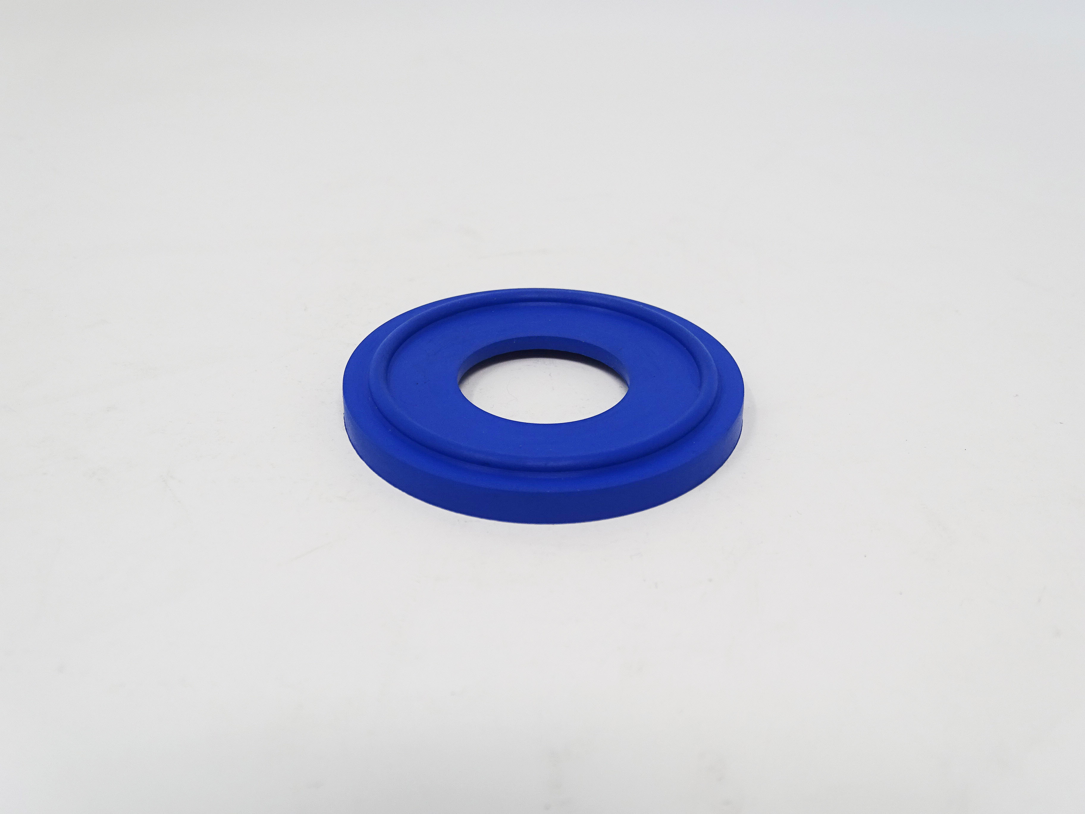 1 Inch Tri-Clamp Seal Lipped